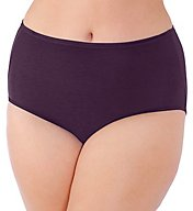 Vanity Fair Illumination Plus Size Brief Panty 13811